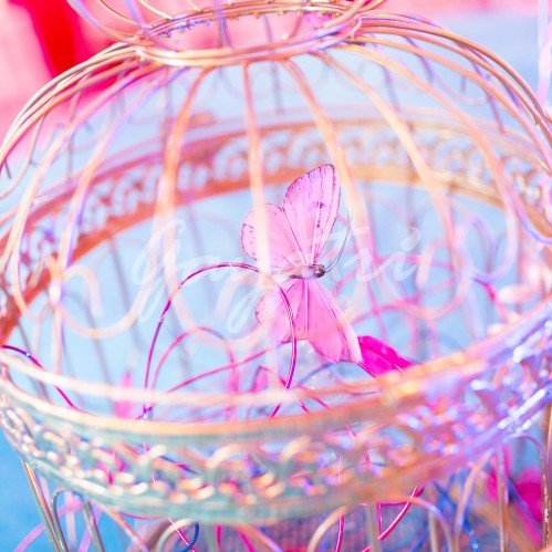 Vintage Circus party decoration ideas